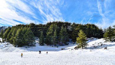 Photo of أفكار للسياحة الشتوية الرخيصة في لبنان